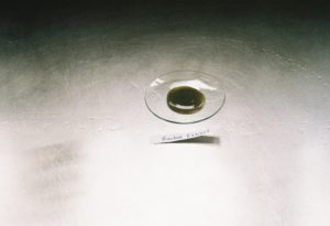 Hydrolyzed Adansonia Digitata Extract