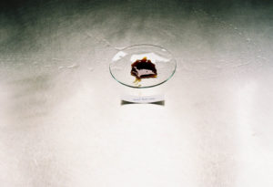 Croton Lechleri [Dragon's Blood] Resin Extract